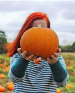 Incredibusy pumpkin