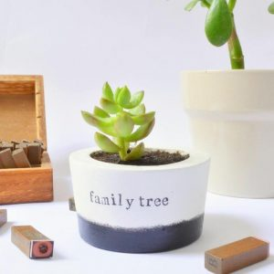 family-tree-ceramic-pot-1